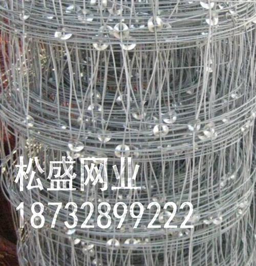 草原网围栏 (89).jpg