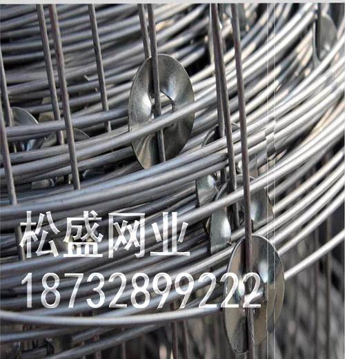 草原网围栏 (123).jpg